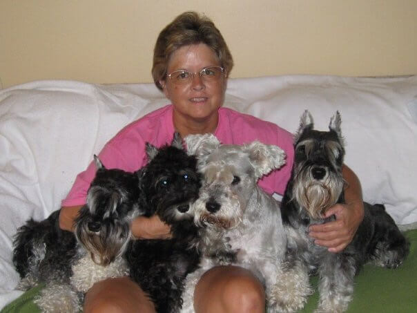 Jetta, Ashton, Axel, Magnum and Monte-Rainbow Bridge